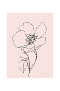 Plakat Wild Rose