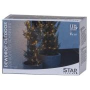 Star Trading-Dew Drop Light Strand 200 LED Outdoor