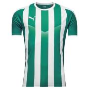 PUMA Spilletrøje LIGA Striped - Grøn/Hvid